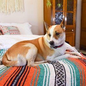 Bedding - Mexican Blanket / Rip Tide Boho Blanket